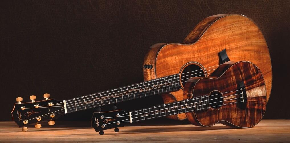 guitar-and-ukulele